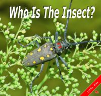 Who Is The Insect?
